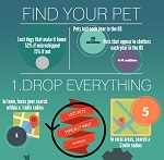 thumbnail Find Your Pet