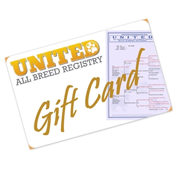 Picture of Gift Card - Any Amount